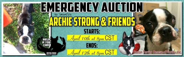 Help If You Can Auction Starts April 10, 2015